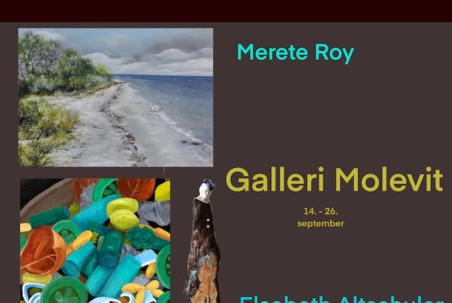 Galleri Molevit